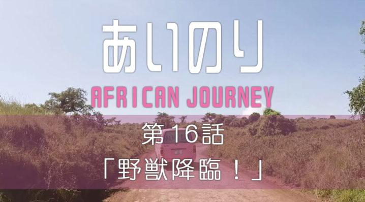 あいのり アフリカンジャーニー 第16話